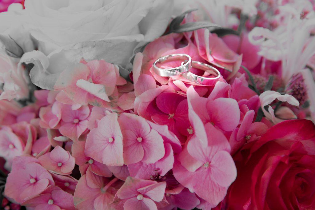 Die Ringe unseres Brautpaars Eileen & Chris im Blumenmeer.